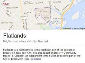 Flatlands Pest Control