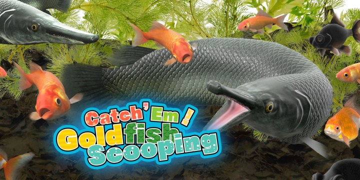Catch 'Em! Goldfish Scooping