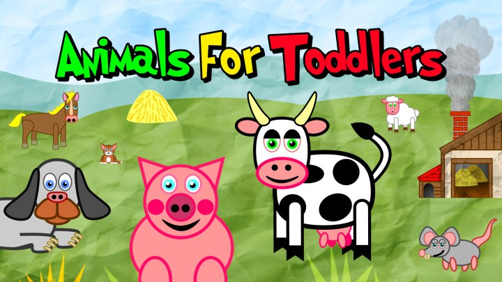 Animals for Toddlers