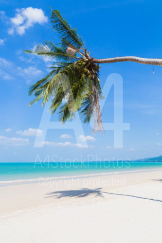 Exotic foreign beaches can be landscape photography or holiday photos.