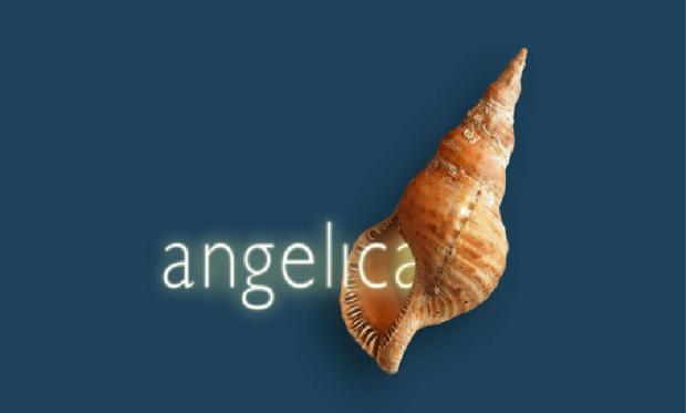 Angelica festival di musica internazionale 2003