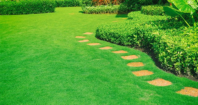 Spring Guide to Improve Curb Appeal of Your Landscape