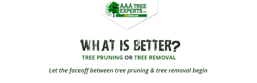 What is better? Tree Pruning or Tree Removal