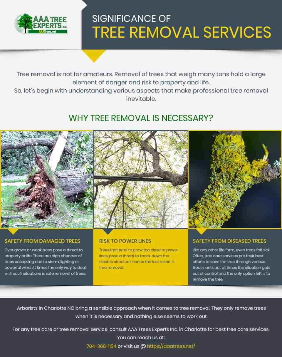 Significance of Tree Removal Services