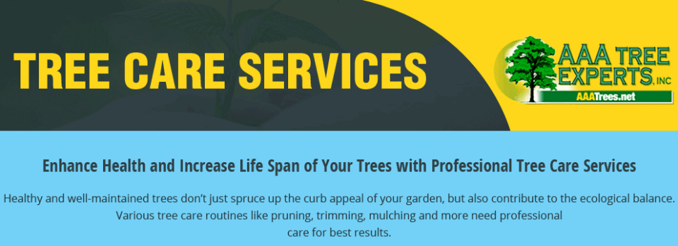 Enhance Health and Increase Life Span of Your Trees with Professional Tree Care Services