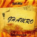 Shatta Wale – GHAMRO (Prod. By Shawerz Ebiem)