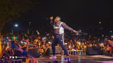Photo of Stonebwoy, Yaa Pono, Praye, others thrill patrons at SConcert 2018