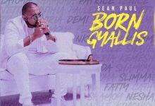 Photo of Sean Paul – Born Gyallis (Prod. By Chimney Records)