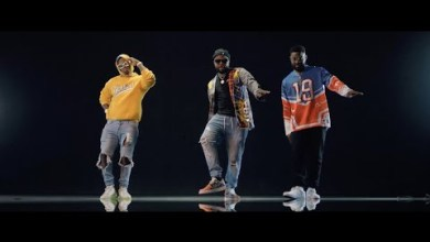 Photo of Official Video: Skales – Oliver Twist II Remix Ft. Falz, Harmonize