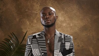 Photo of DJ Wyre – King Promise Mixtape