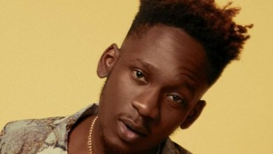 Photo of Mr Eazi – Bedroom Bully