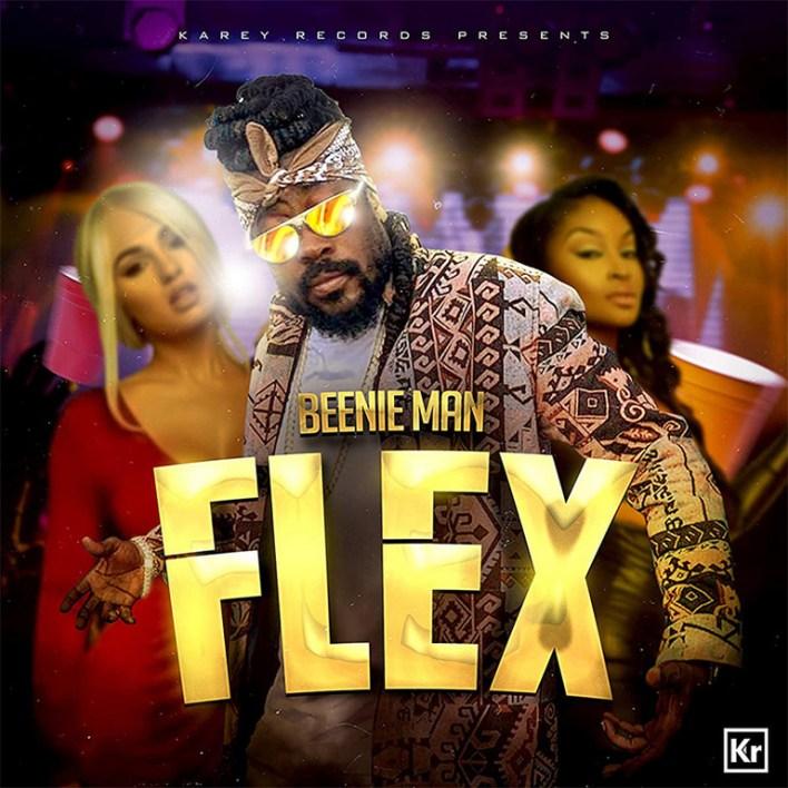 Beenie Man - Flex mp3 download