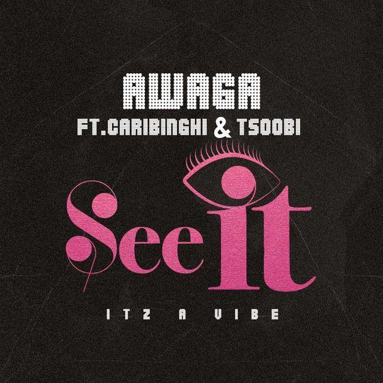 Awaga – See It Ft Caribinghi & Tsoobi mp3 download