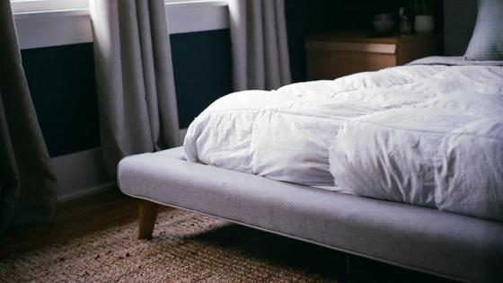 Bed bug control Stockton