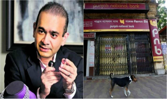 pnb पीएनबी share price decreases
