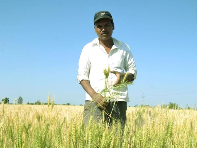 modi नरेंद्र मोदी govt cut crops of farmers for rally of narendra modi