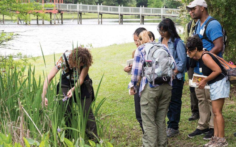 A group of people examine some greenery outside in a garden.