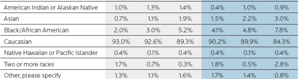 A table showing a snapshot of current board and chief executive demographics by race.