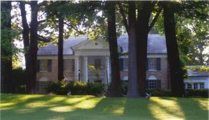 Exterior view of Graceland behind a number of old growth trees.