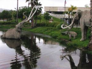 Image of a mammoth stuck in a tar pit with two other mammoths standing on the edge of the pit.