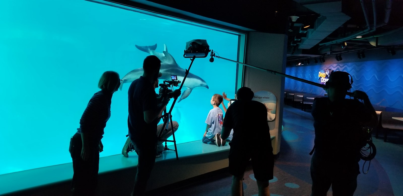 Shedd Aquarium's Sea Curious Kids Video in action