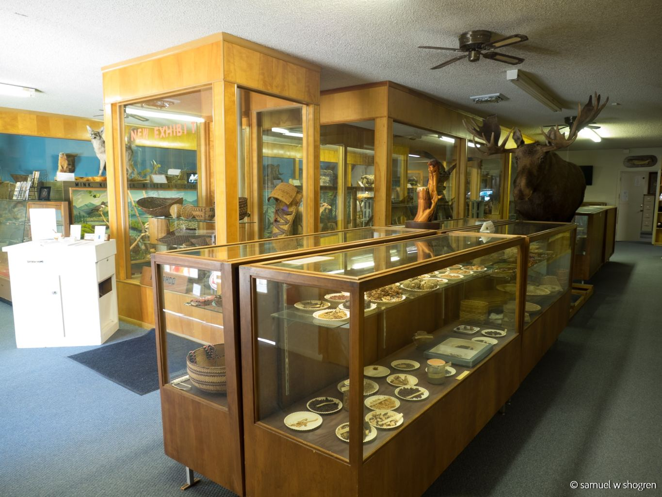 An interior of the museum with art and artifacts on display in glass cases.