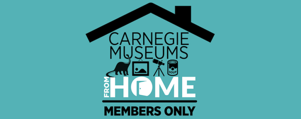 "A graphic reading ""Carnegie Museums from Home: Members Only"" with icons of a dinosaur, painting, telescope, and soup can."