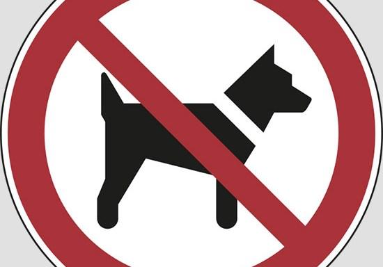 (vietato l'ingresso ai cani)