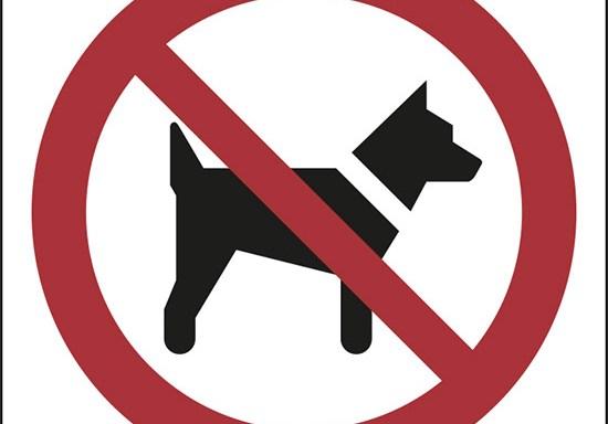 (vietato l'accesso ai cani – no dogs)