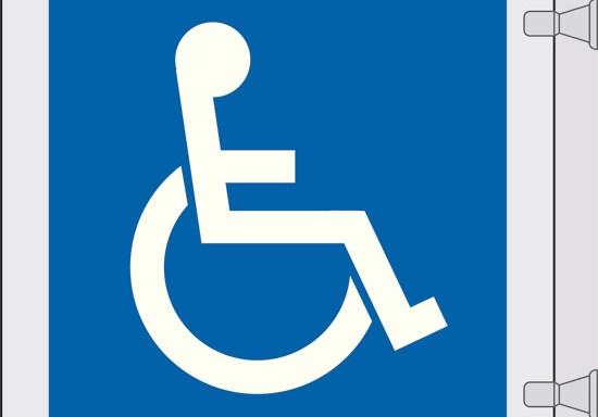 (disabili)