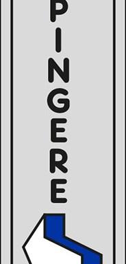SPINGERE