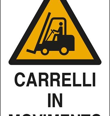 CARRELLI IN MOVIMENTO