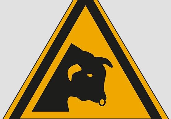 (warning: bull)