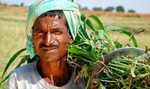खुशखबरी: बिहार के 61 लाख किसानों के खाते में भेजा जा रहा है दो-दो हजार रूपये
