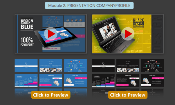 Presentation Warrior Professional Module 2