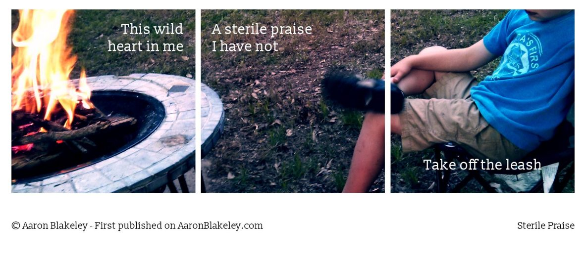 Sterile Praise - Aaron Blakeley Writes - Writer Blogger