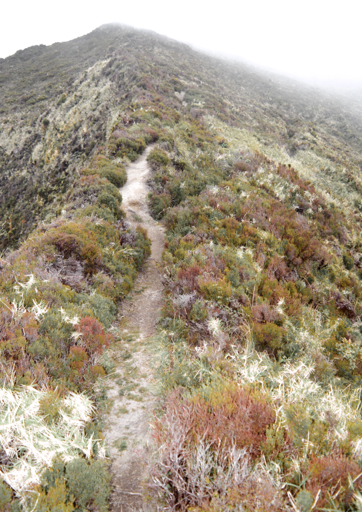 Steep hike at Lagoa do Fogo