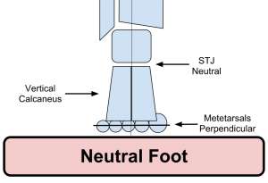Neutral Foot Alignment