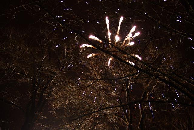 Central Park NYE Fireworks
