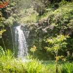 On the Road to Hana: Random Stops Along the Roadside