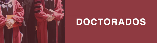 doctorados-online-a-distancia-aau