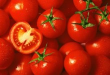 Photo of 5 Reasons Why You Need Tomatoes