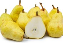 Photo of 4 Fruits you should never take when hungry