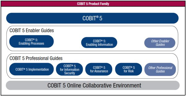 Publications COBIT