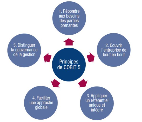 COBIT : les 5 principes