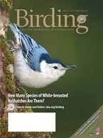 Birding Online: May 2014