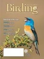 Birding Online: April 2015