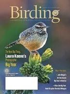 Birding Online: August 2018