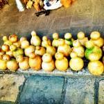 Shekere instrument gourd