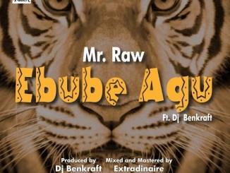 Download Music: Mr Raw - Ebube Agu